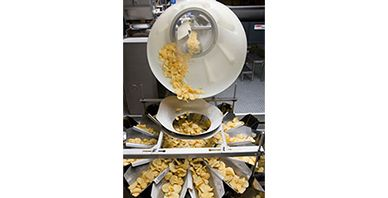 Potato Chip Centralized Feeding and Packaging System