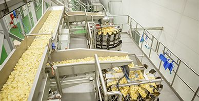 Saudi Customer Potato Chip Packaging System